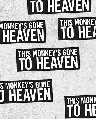 Canción del día-Pixies