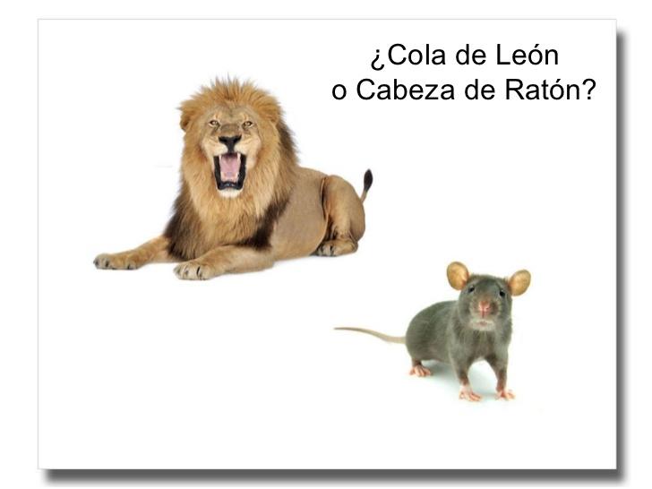 Fondo de armario. Cabeza de ratón o cola de león. Por Carlos Ruf.